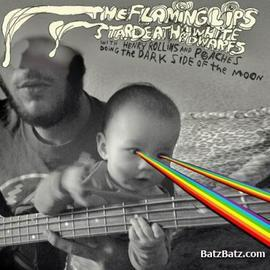 Flaming Lips 'Dark Side of The Moon'